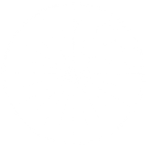icon-eyelense